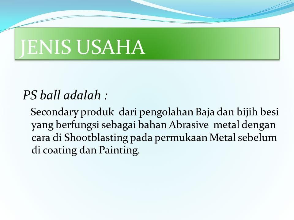 JENIS USAHA PS ball adalah :