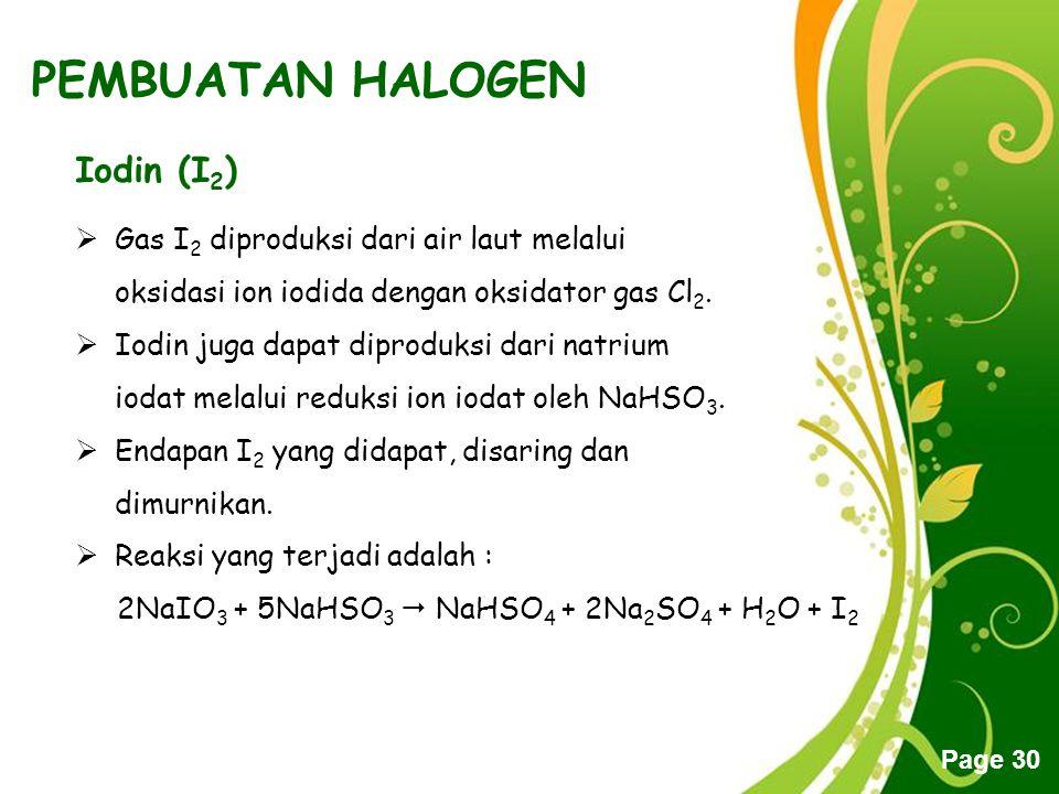 PEMBUATAN HALOGEN Iodin (I2)
