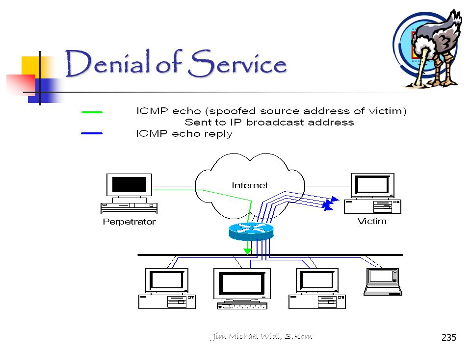 Denial of Service Jim Michael Widi, S.Kom