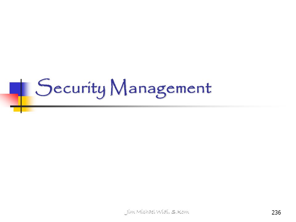 Security Management Jim Michael Widi, S.Kom