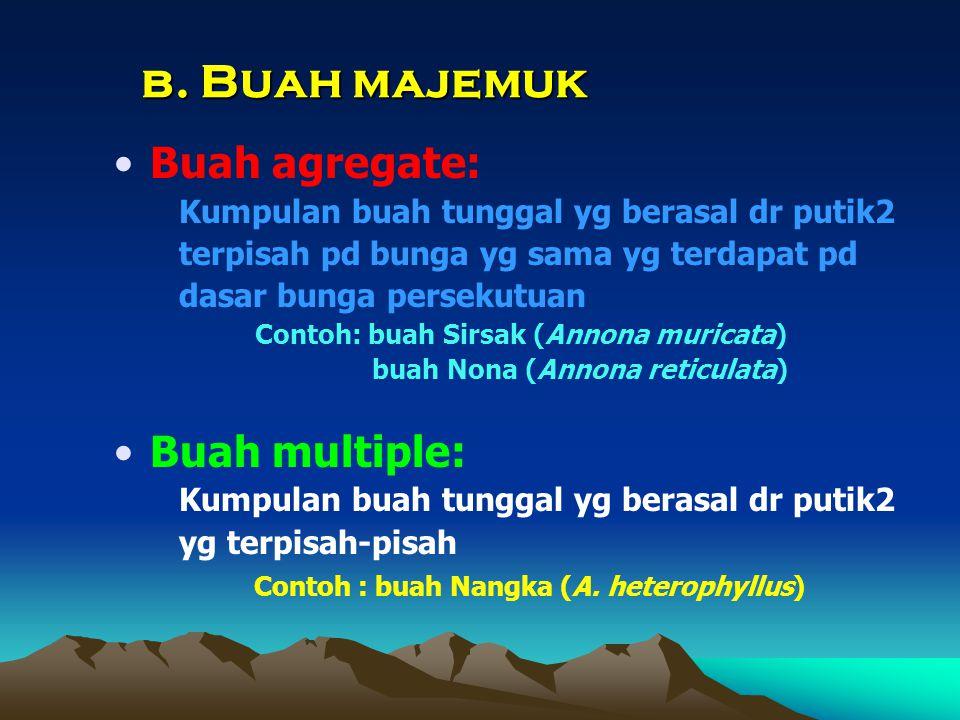 b. Buah majemuk Buah agregate: Buah multiple: