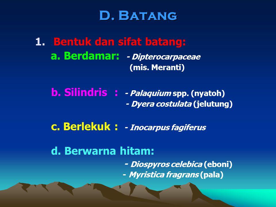 D. Batang Bentuk dan sifat batang: a. Berdamar: - Dipterocarpaceae