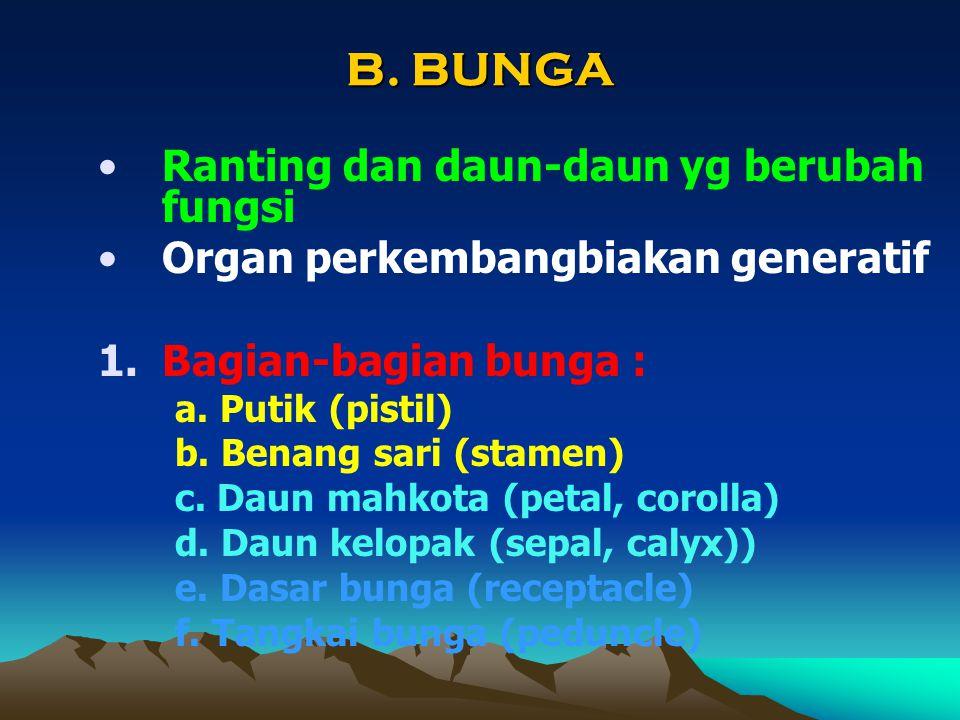B. BUNGA Ranting dan daun-daun yg berubah fungsi