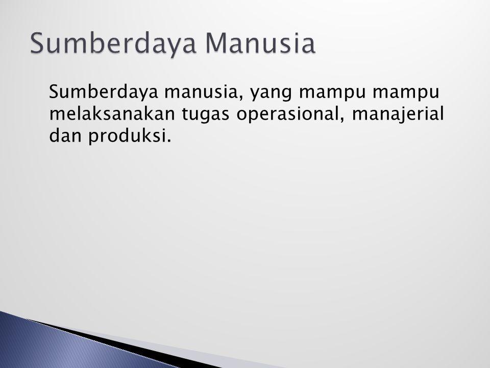 Sumberdaya Manusia Sumberdaya manusia, yang mampu mampu melaksanakan tugas operasional, manajerial dan produksi.