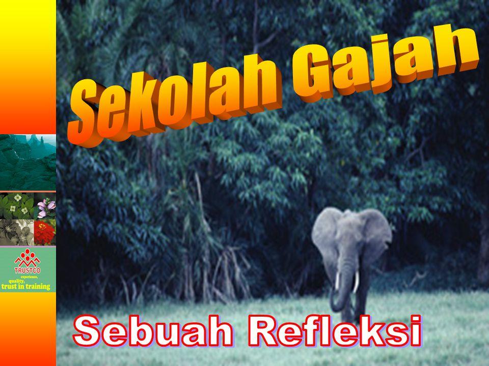 Sekolah Gajah Sebuah Refleksi
