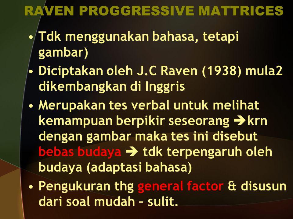 RAVEN PROGGRESSIVE MATTRICES