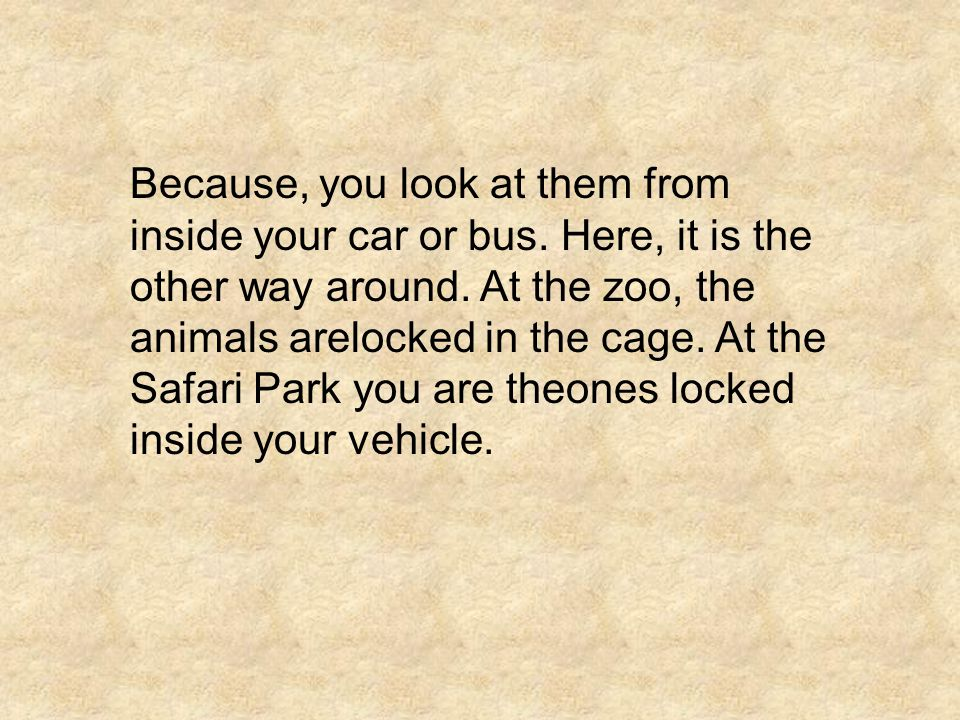 Because, you look at them from inside your car or bus