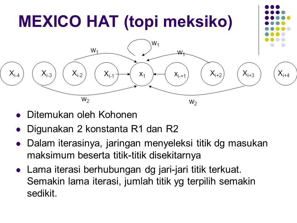 MEXICO HAT (topi meksiko)