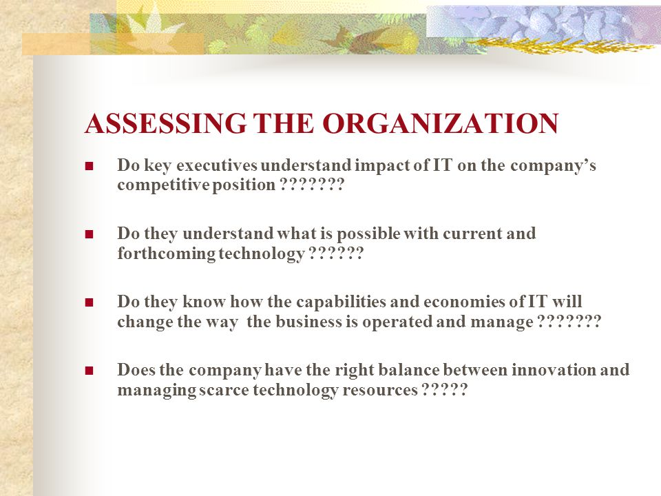 ASSESSING THE ORGANIZATION
