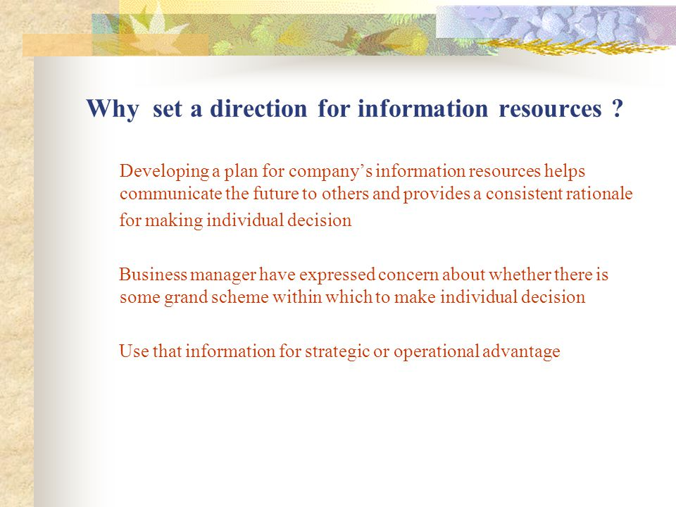 Why set a direction for information resources