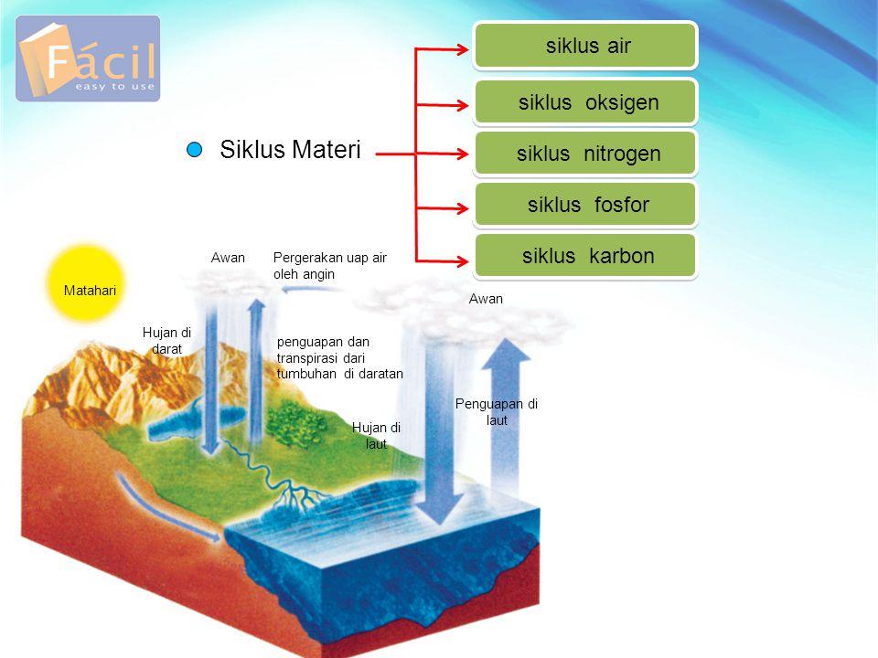 Siklus Materi siklus air siklus oksigen siklus nitrogen siklus fosfor