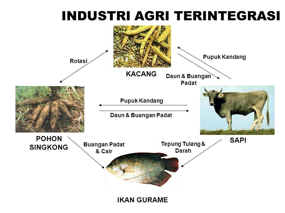 INDUSTRI AGRI TERINTEGRASI