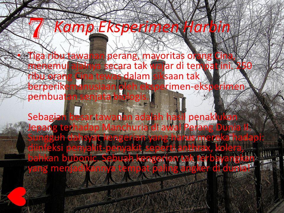 Kamp Eksperimen Harbin