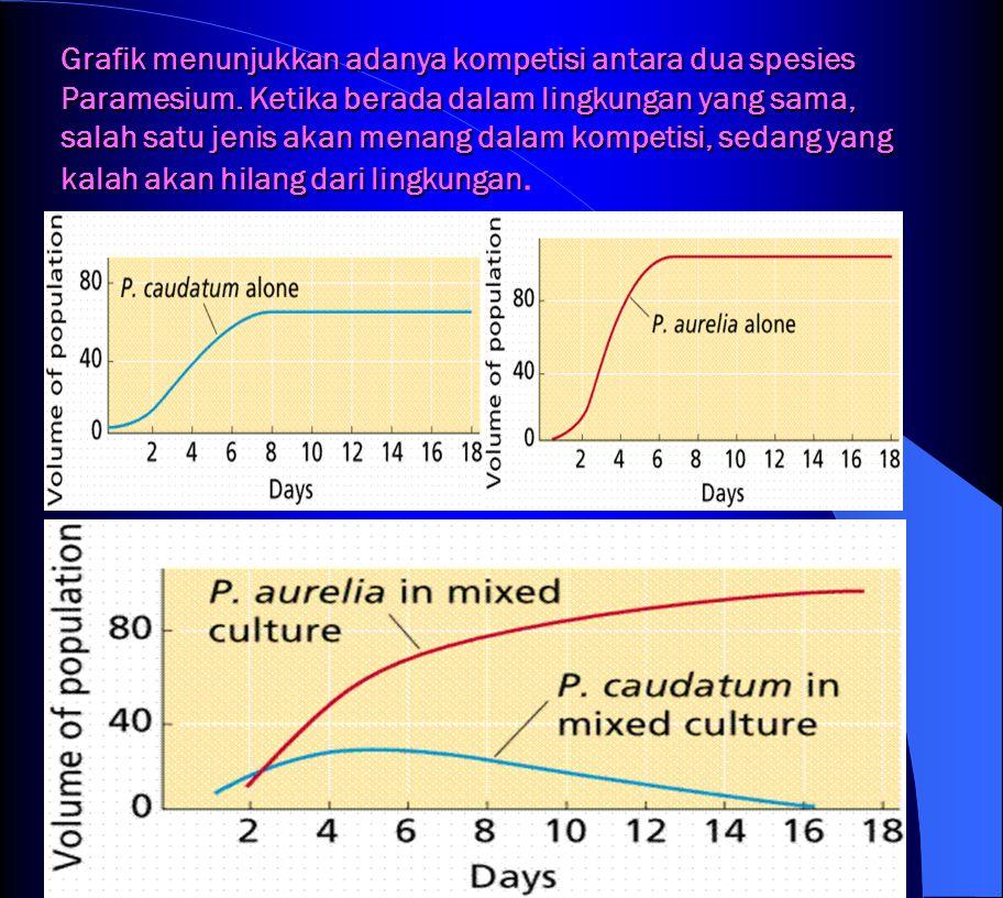 Grafik menunjukkan adanya kompetisi antara dua spesies Paramesium