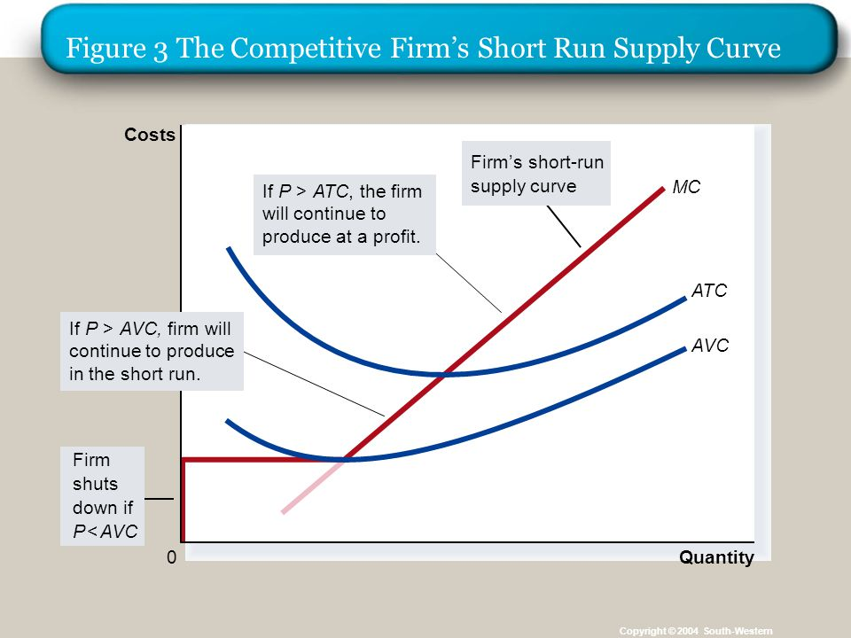 Figure 3 The Competitive Firm's Short Run Supply Curve