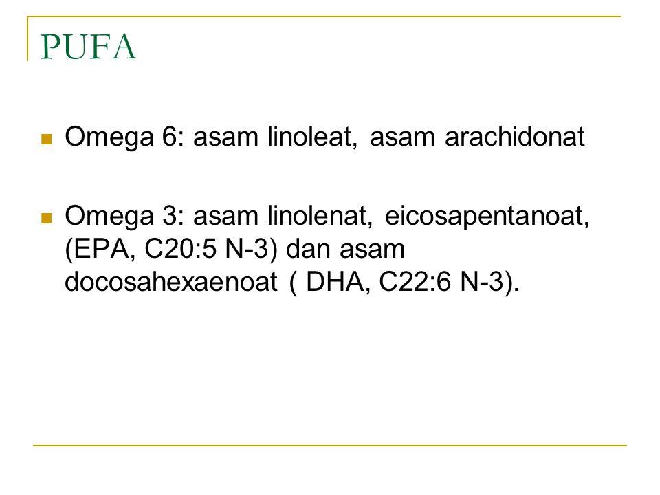 PUFA Omega 6: asam linoleat, asam arachidonat