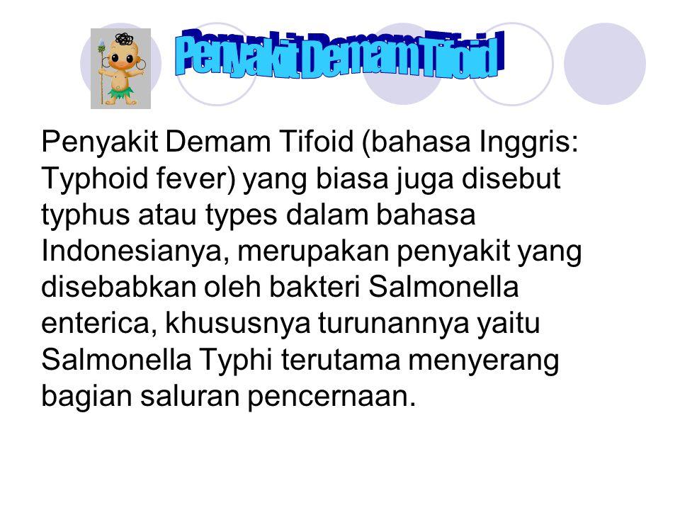 Penyakit Demam Tifoid