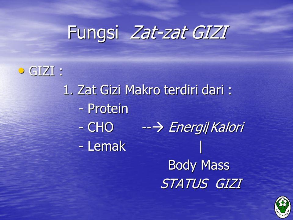 Fungsi Zat-zat GIZI GIZI : 1. Zat Gizi Makro terdiri dari : - Protein