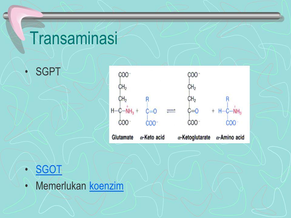 Transaminasi SGPT SGOT Memerlukan koenzim