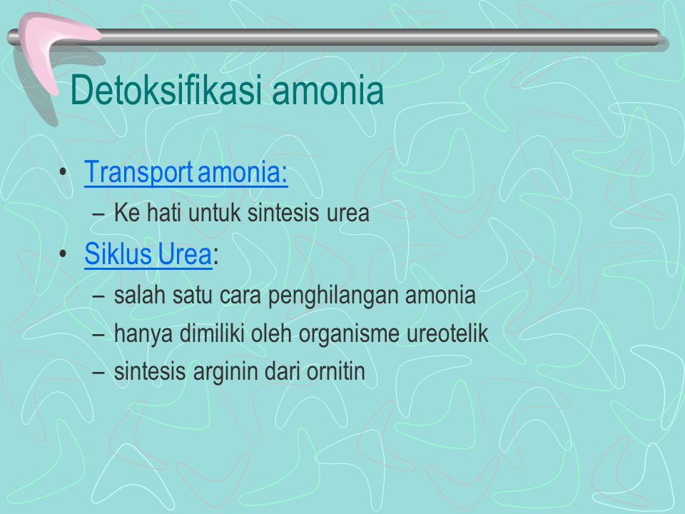 Detoksifikasi amonia Transport amonia: Siklus Urea: