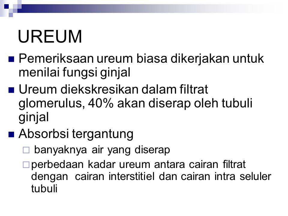 UREUM Pemeriksaan ureum biasa dikerjakan untuk menilai fungsi ginjal