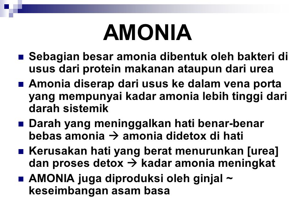 AMONIA Sebagian besar amonia dibentuk oleh bakteri di usus dari protein makanan ataupun dari urea.