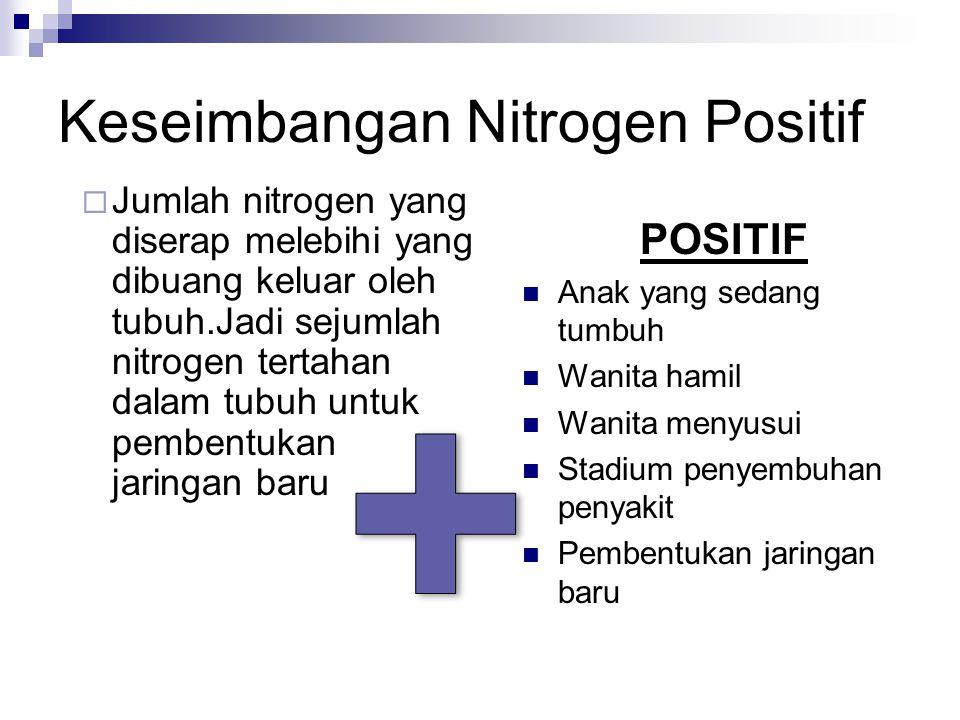 Keseimbangan Nitrogen Positif