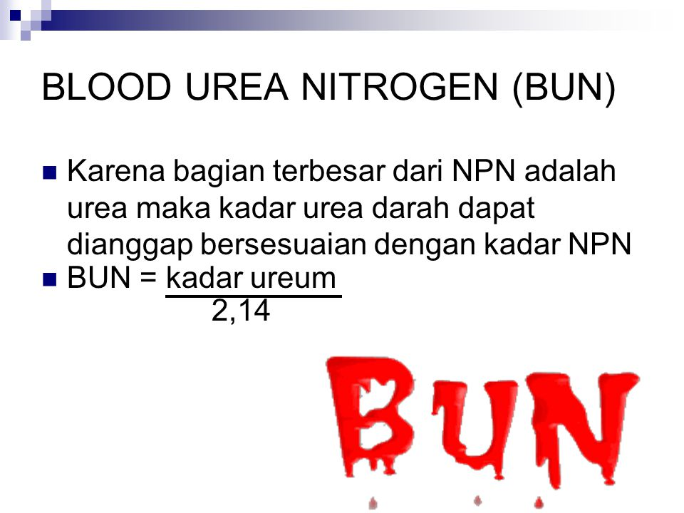 BLOOD UREA NITROGEN (BUN)