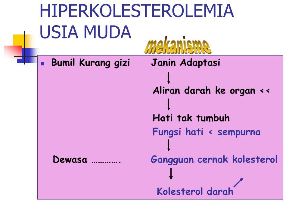 HIPERKOLESTEROLEMIA USIA MUDA