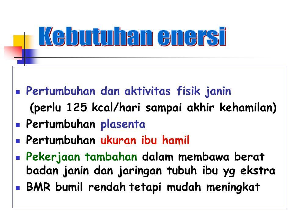 Kebutuhan enersi Pertumbuhan dan aktivitas fisik janin