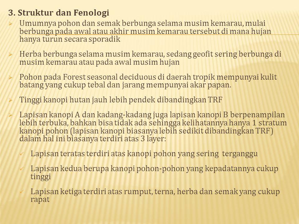 3. Struktur dan Fenologi
