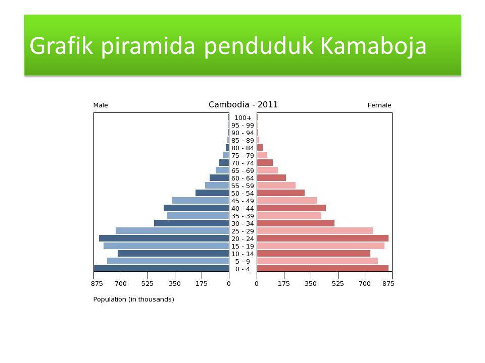 Grafik piramida penduduk Kamaboja