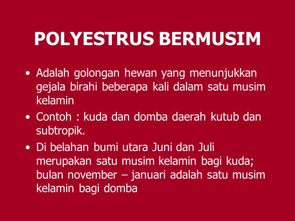 POLYESTRUS BERMUSIM Adalah golongan hewan yang menunjukkan gejala birahi beberapa kali dalam satu musim kelamin.