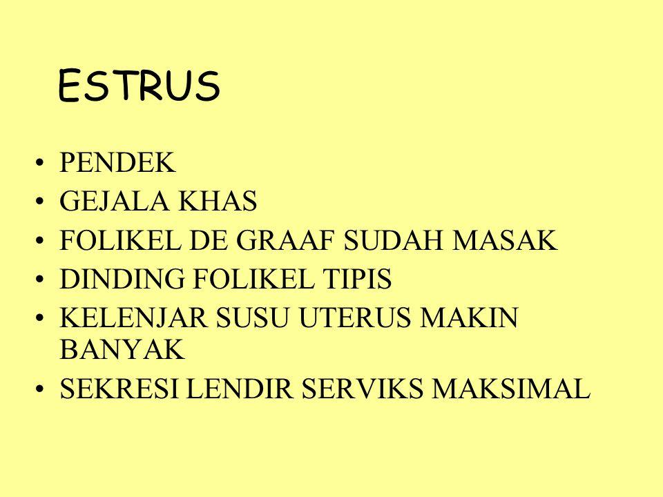 ESTRUS PENDEK GEJALA KHAS FOLIKEL DE GRAAF SUDAH MASAK