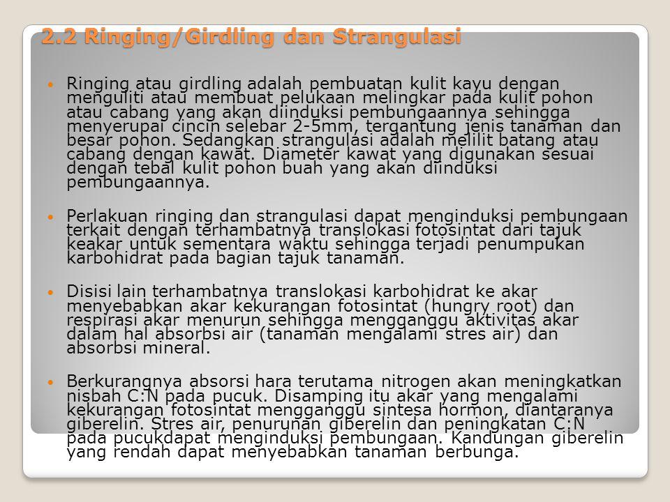 2.2 Ringing/Girdling dan Strangulasi