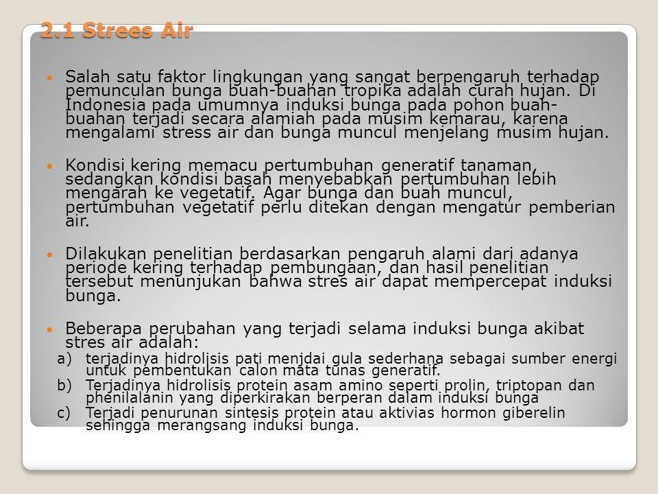 2.1 Strees Air