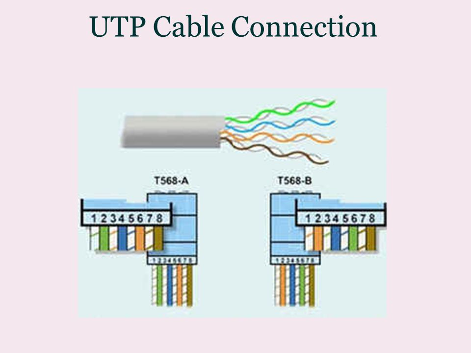 UTP Cable Connection