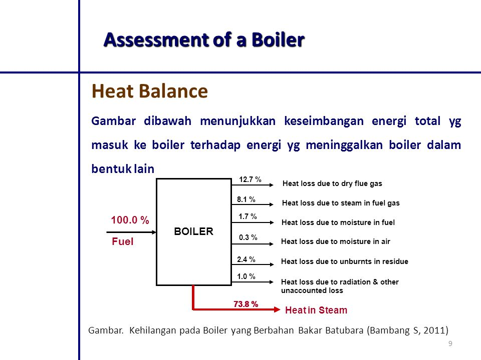 Assessment of a Boiler Heat Balance