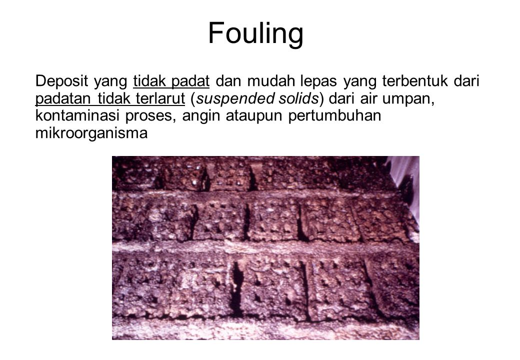 Fouling