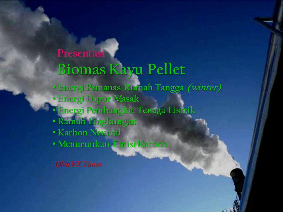 Biomas Kayu Pellet Presentasi Energi Pemanas Rumah Tangga (winter)