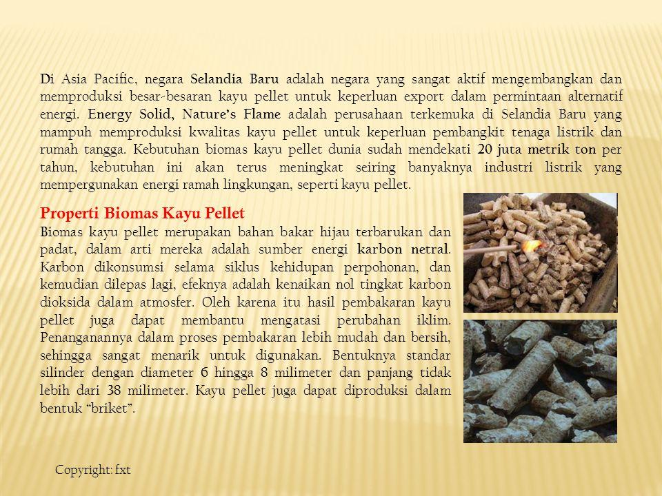 Properti Biomas Kayu Pellet