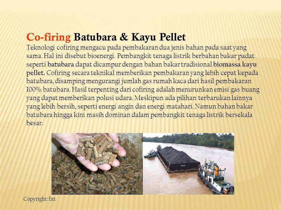 Co-firing Batubara & Kayu Pellet
