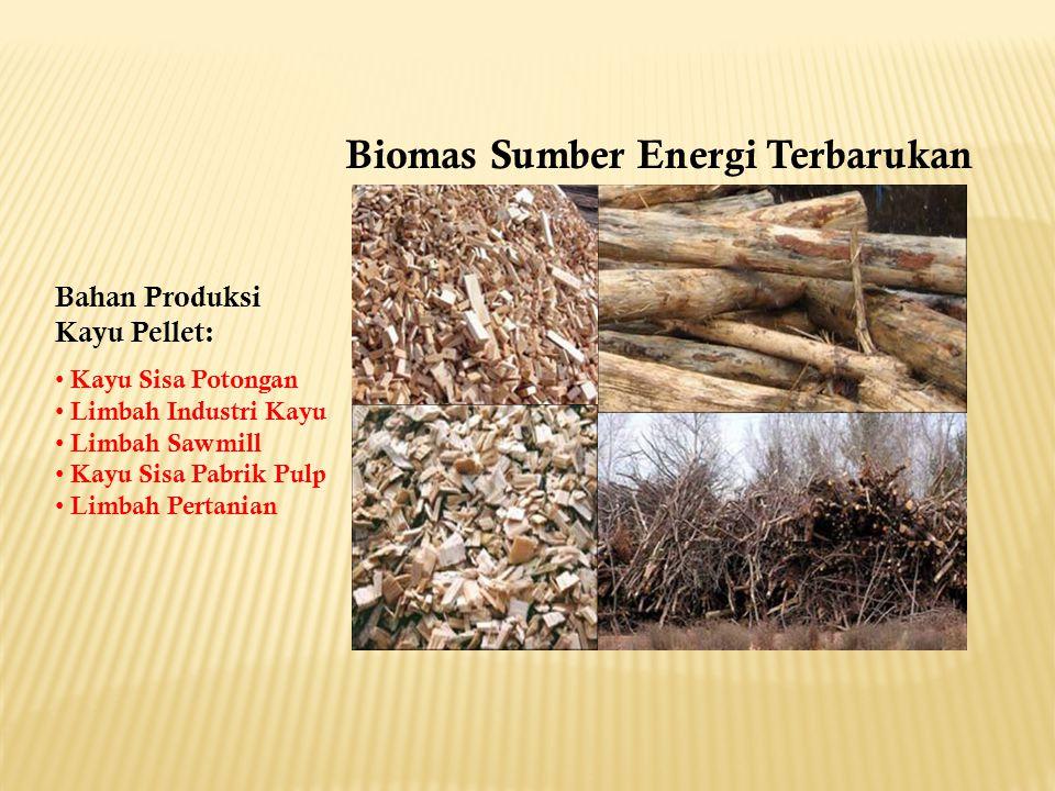 Biomas Sumber Energi Terbarukan