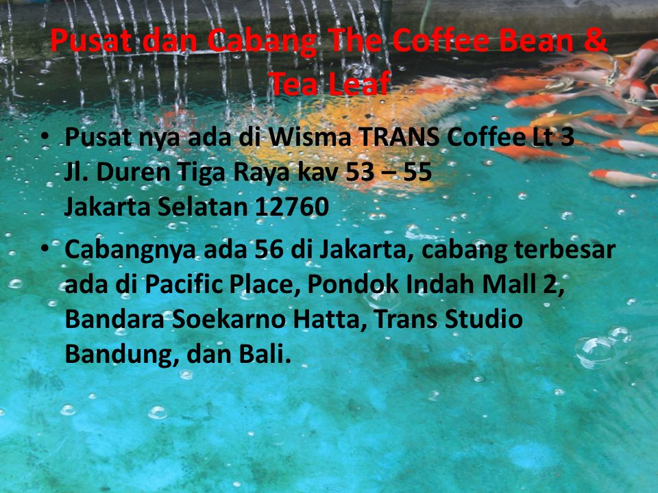 Pusat dan Cabang The Coffee Bean & Tea Leaf