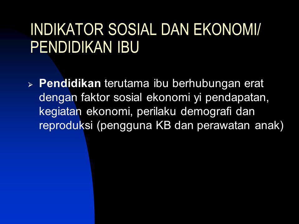 INDIKATOR SOSIAL DAN EKONOMI/ PENDIDIKAN IBU