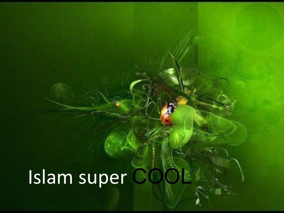 Islam super COOL