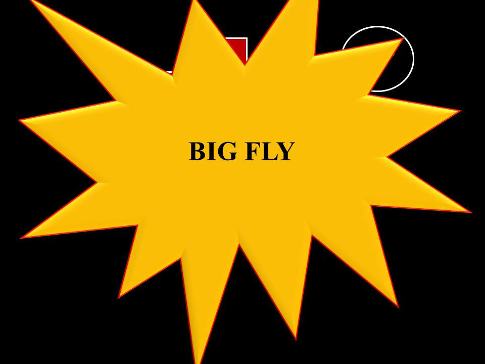 BIG FLY BOARD 2 A 1 2 3 4 5 6 7