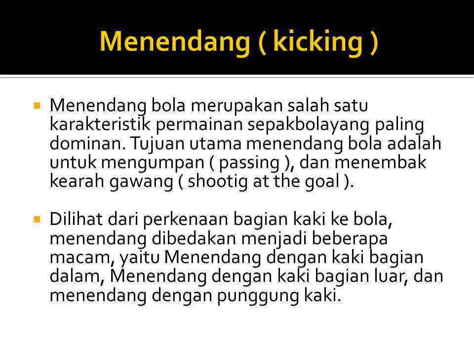 Menendang ( kicking )