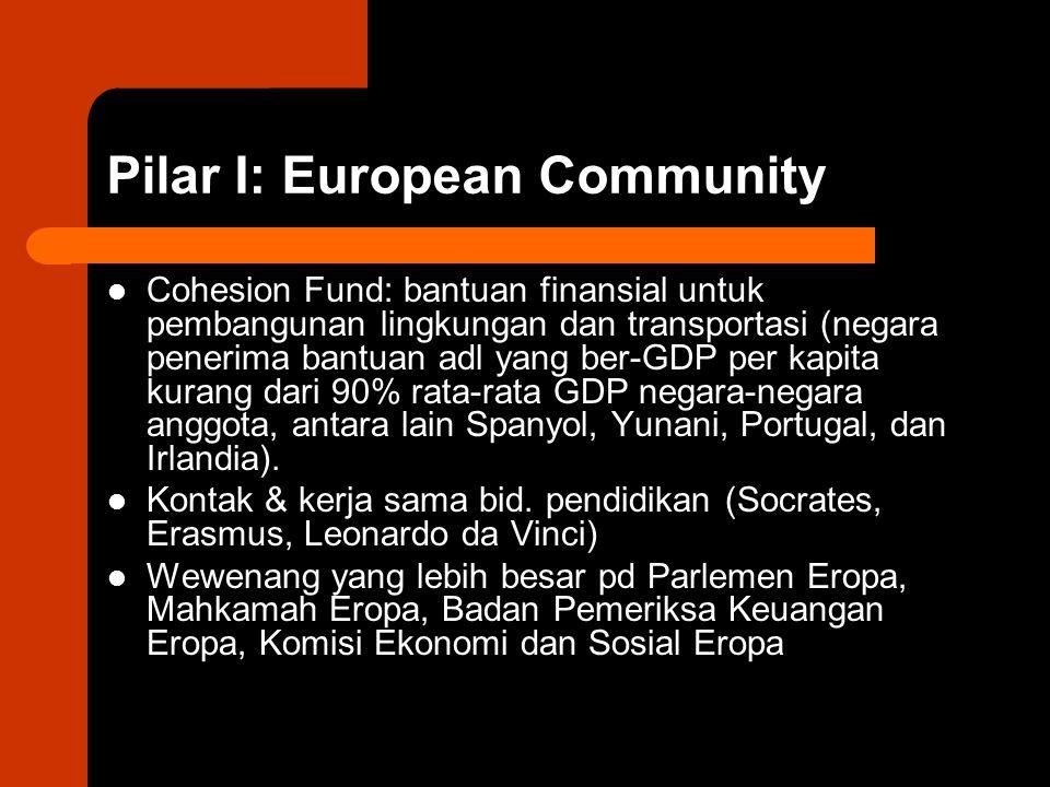 Pilar I: European Community
