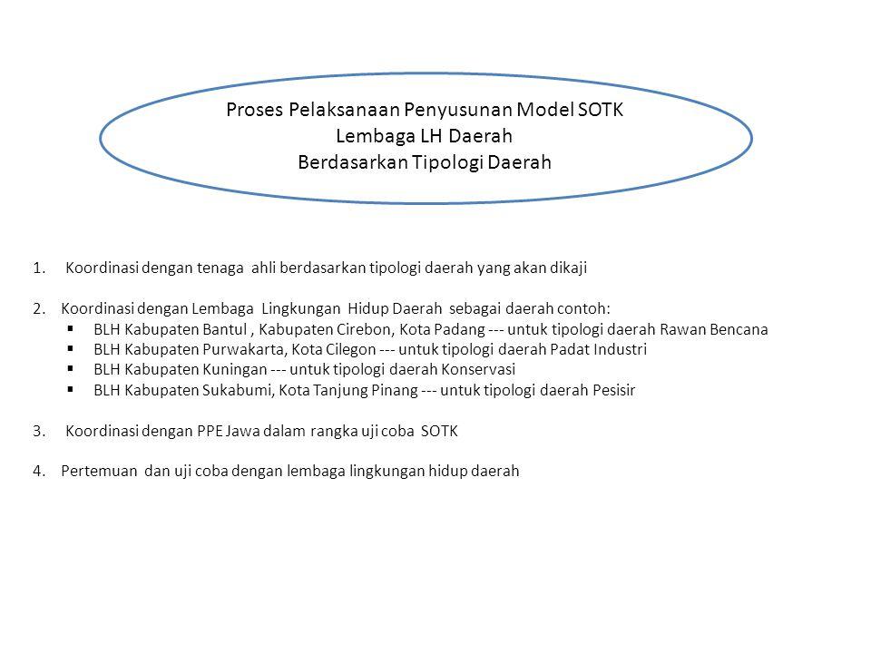 Proses Pelaksanaan Penyusunan Model SOTK Lembaga LH Daerah